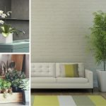 Want to brighten up an room?  Bring the Outdoors In